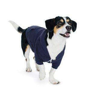 American Apparel dog zip hoodie