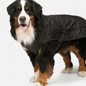 2-in-1 Harness Dog Coat