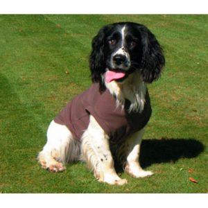 Dog T Shirt Body