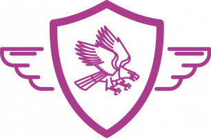 icon-patch-guy_pink